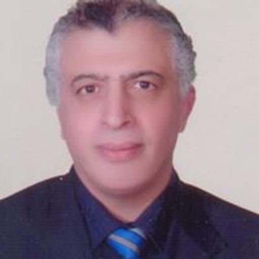 Ibrahim Seifeldin, M.D., Ph.D.
